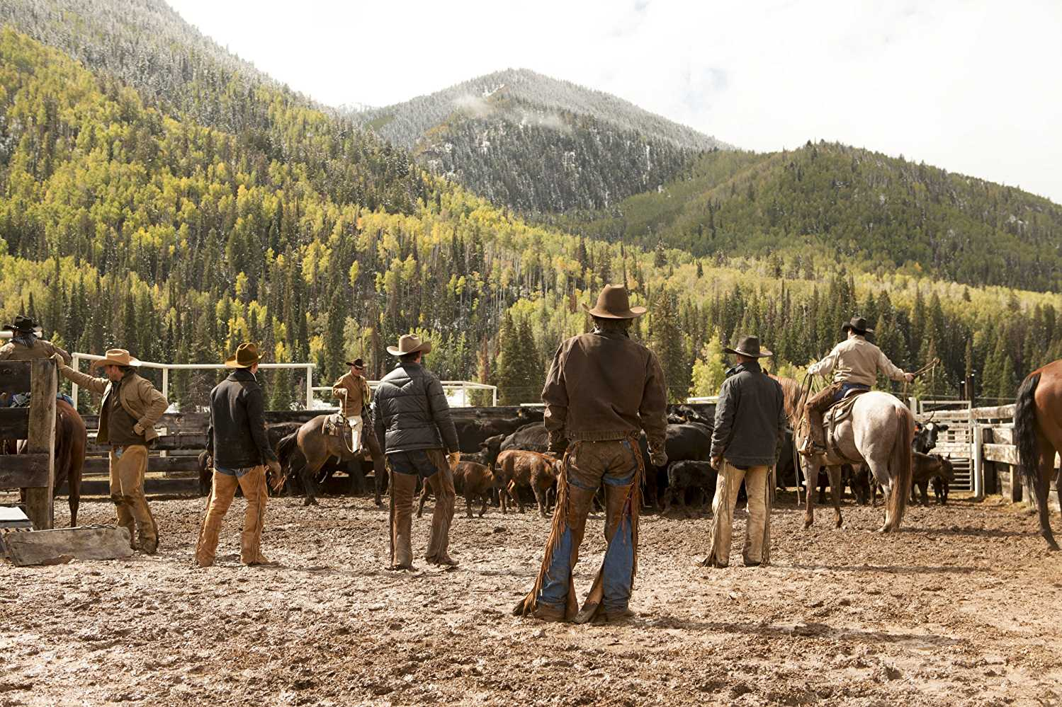 'Yellowstone' is one of the shows that will soon drop the Weinstein label (IMDb)
